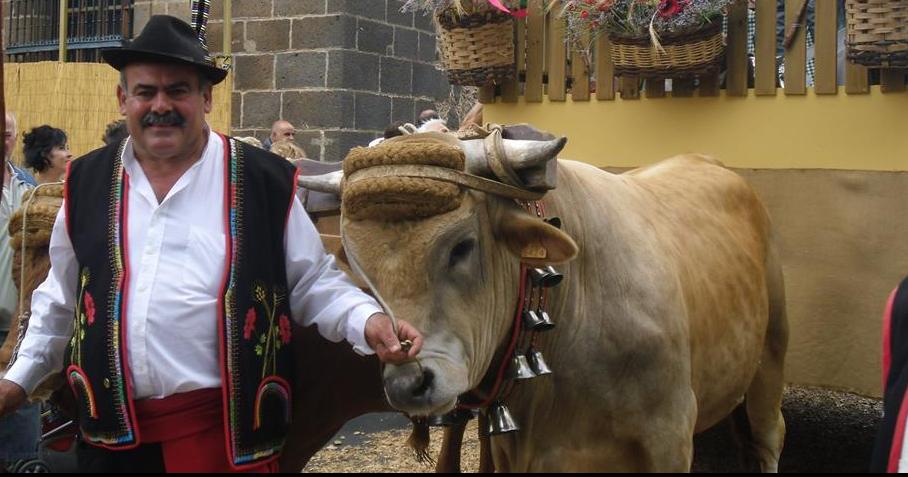 PedroMolinaRamos